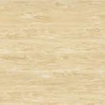 golden sand  dl preslarge